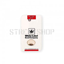 White Label Rhino Reg