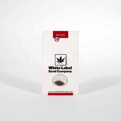 Kali Haze Reg - White Label...