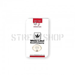 White Skunk Fem - White Label
