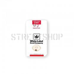 Super Skunk Auto - White Label